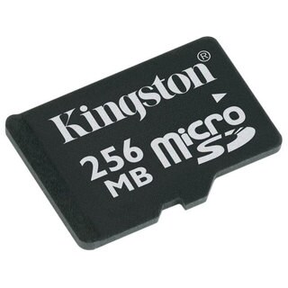 Kingston 2GB MicroSD Memory Card with Adapter