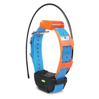 Petstores Waterproof Pathfinder TRX Tracking Only Dog Collar - Blue - N/A