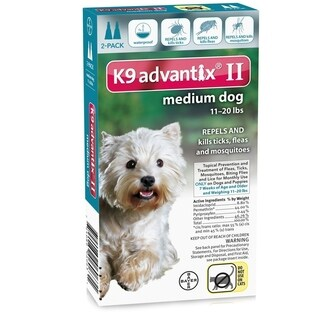 Petstores Flea and Tick Control for Dogs 10-22 lbs 2 Month Supply - N/A - N/A