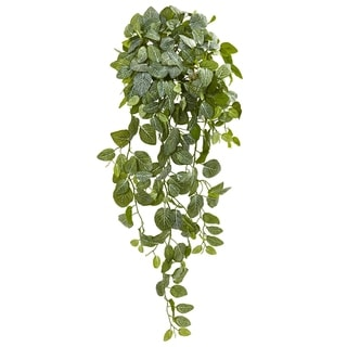 Link to Nearly Natural Fittonia Hanging Bush 36-inch Real Touch Artificial Plant (Set of 2) Similar Items in Decorative Accessories
