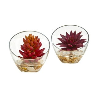 Succulents in Glass Vase 6-inch Artificial Plants (Set of 2)