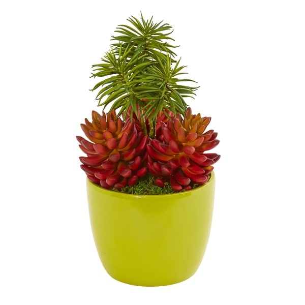Nearly Natural Succulent Green/Orange Artificial Plant with Vase
