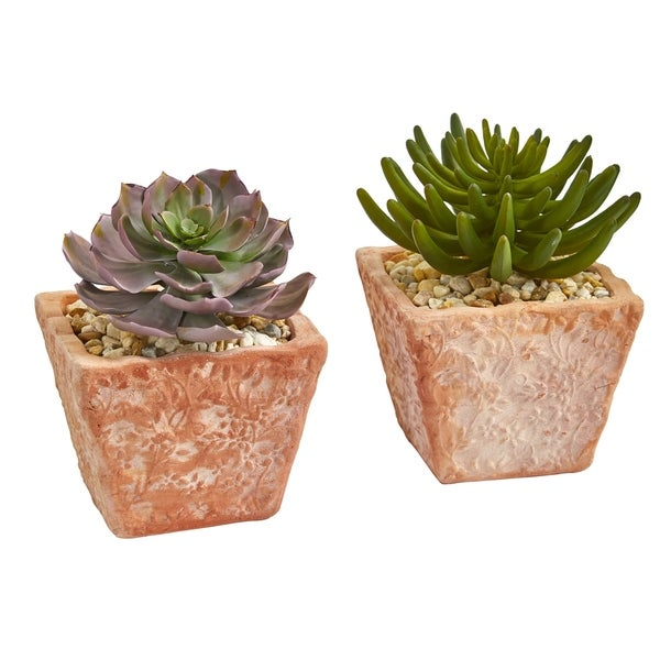 Nearly Natural 9-inch Succulent Artificial Plant (Set of 2)