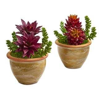 Nearly Natural Succulent Artificial Plant in Ceramic Planter (Set of 2)