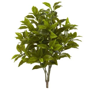 "26"" Coffee Leaf Artificial Plant (Set of 2) (Real Touch)"