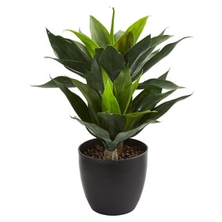 Nearly Natural 21-inch Agave Artificial Plant