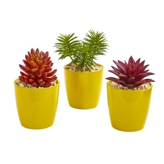 Nearly Natural 9-inch Mixed Succulent Artificial Plant (Set of 3)