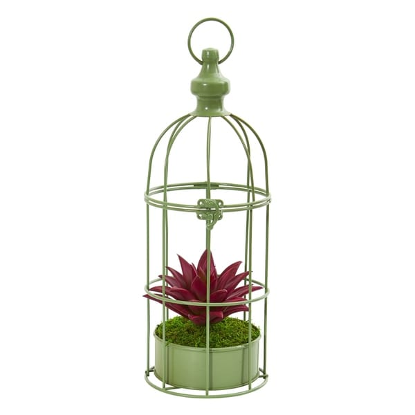 Nearly Natural Artificial Succulent Plant in Decorative Cage