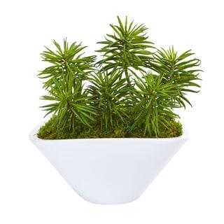 Nearly Natural Succulent Garden Artificial Plant