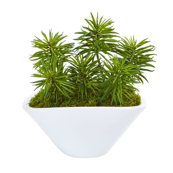 Nearly Natural Succulent Garden Artificial Plant