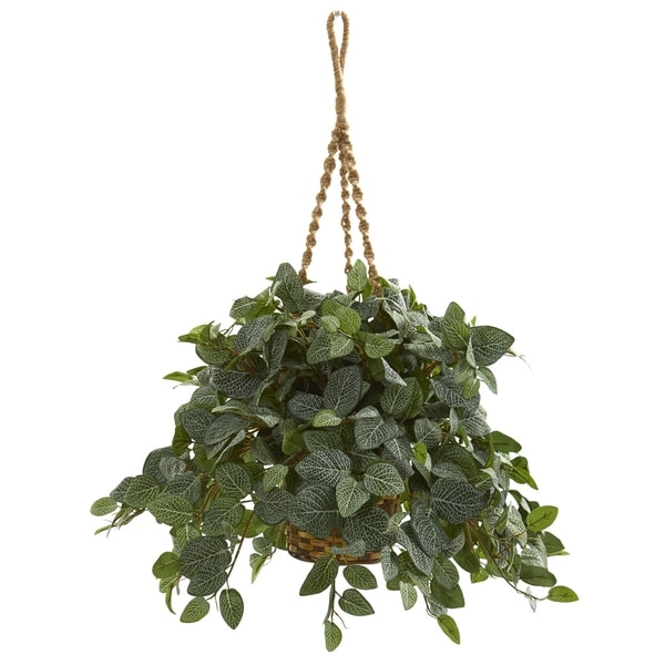 Nearly Natural Fittonia Artifical Plant in Hanging Basket