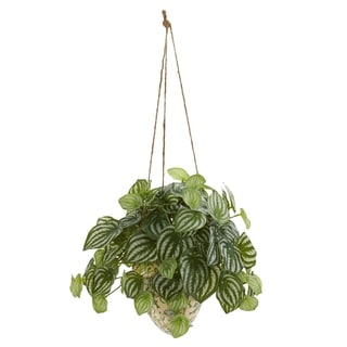Nearly Natural Real Touch Watermelon Peperomia 24-inch High Artificial Plant in Hanging Ceramic Vase