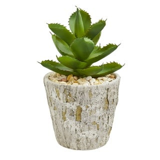Nearly Natural Succulent Artificial Plant in Weathered Oak Planter