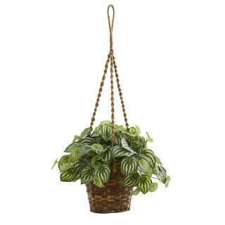 Watermelon Peperomia in Hanging Basket Real Touch Artificial Plant