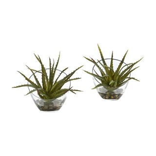 Nearly Natural Aloe Artificial Plant in Slanted Vase (Set of 2)