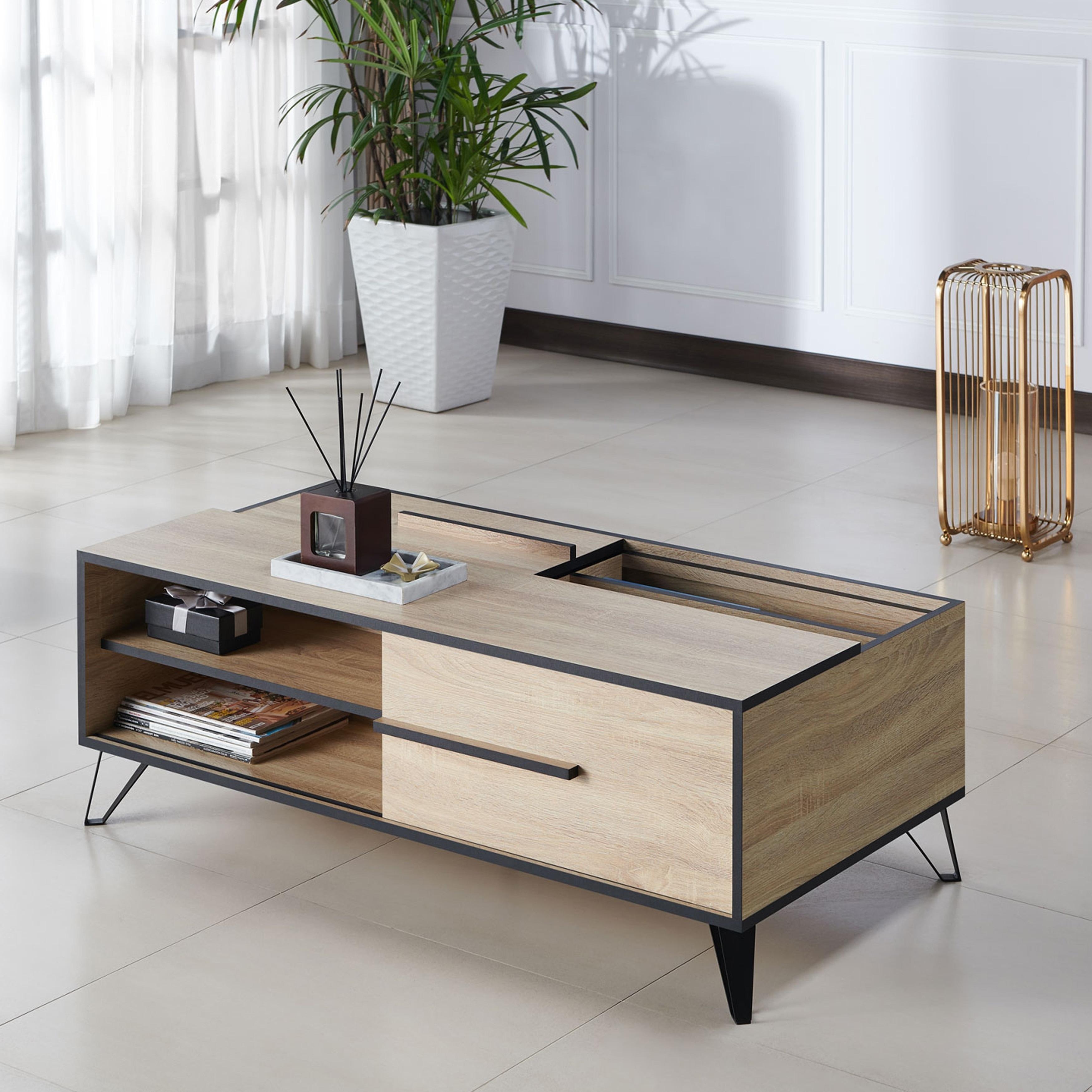 Carbon Loft Feleni Mid Century Modern Storage Coffee Table