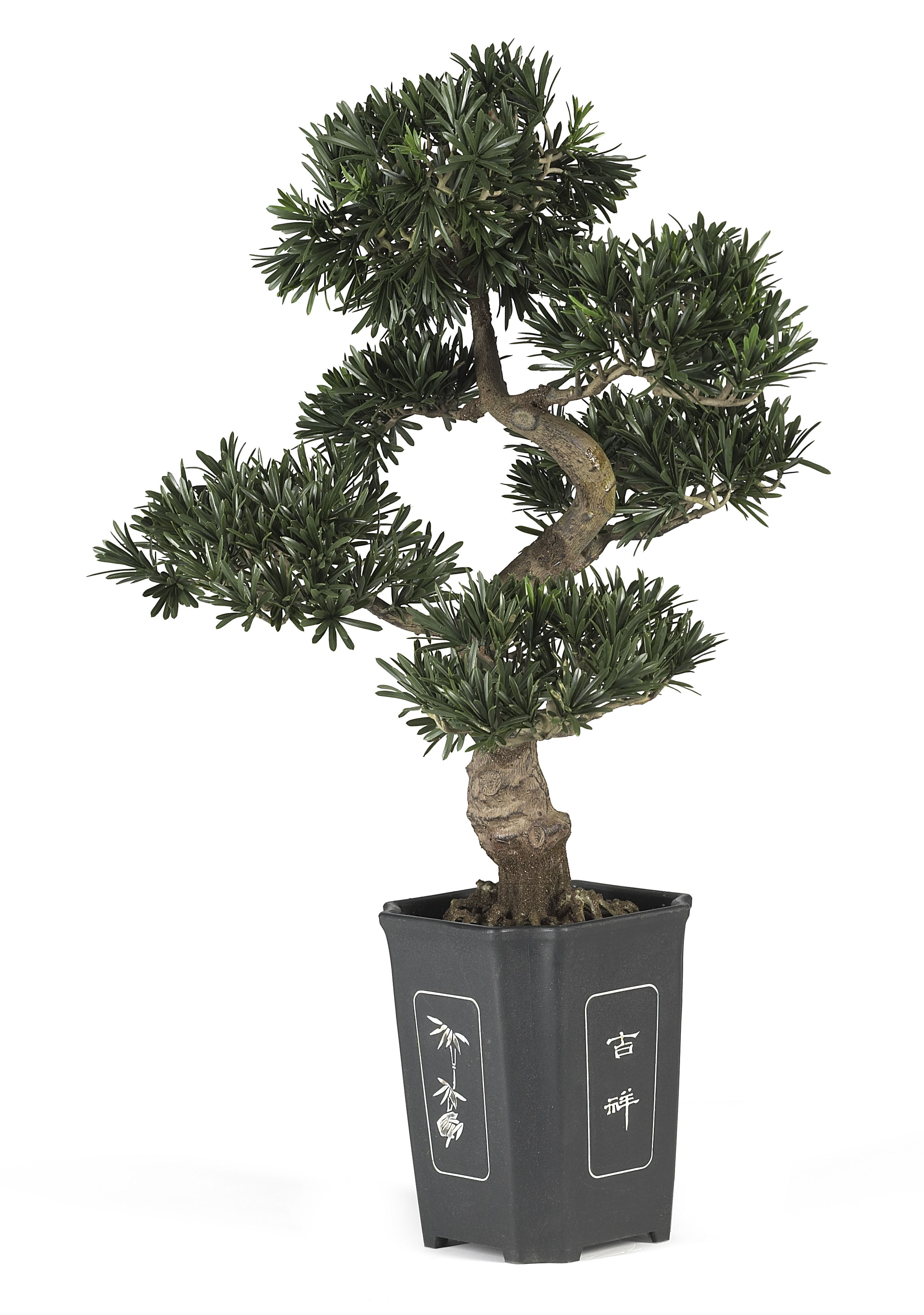 artificial bonsai tree 36 in free shipping today. Black Bedroom Furniture Sets. Home Design Ideas