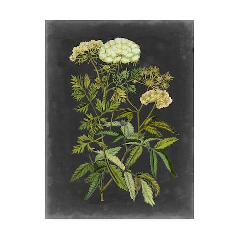 Naomi Mccavitt Bookplate Floral I Canvas Art