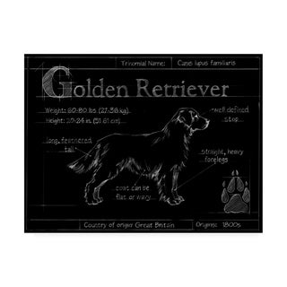 Porch & Den Ethan Harper 'Ua Br Blueprint Golden Retriever' Canvas Art