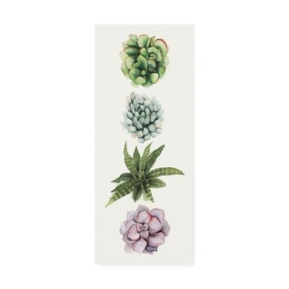 Grace Popp Row of Succulents Ii Canvas Art