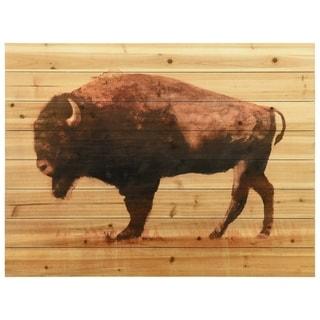 "Empire Art Direct ""Roam"" Arte de Legno Digital Print on Solid Wood Wall Art"