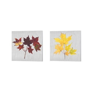Dianne Miller 'Autumn Leaves A' Canvas Art (Set of 2)