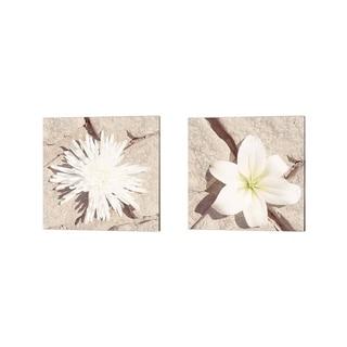 Jason Johnson 'Stone Blossom' Canvas Art (Set of 2)