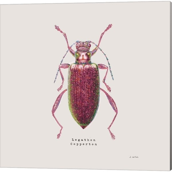 James Wiens 'Adorning Coleoptera Sq Claret' Canvas Art (Set of 2)