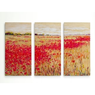 Poppies' Evening Light I-A Premium Multi Piece Art available in 3 sizes