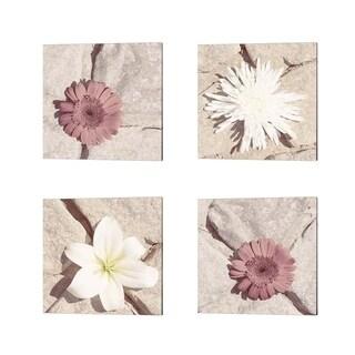 Jason Johnson 'Stone Blossom' Canvas Art (Set of 4)
