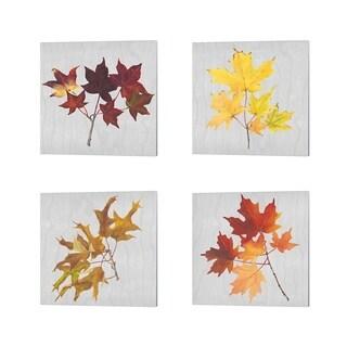 Dianne Miller 'Autumn Leaves A' Canvas Art (Set of 4)