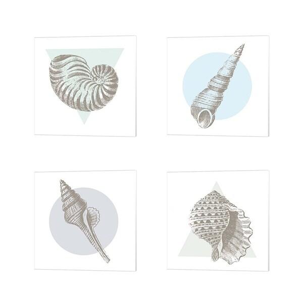 Wild Apple Portfolio 'Conchology Sketches' Canvas Art (Set of 4)