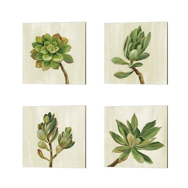 Silvia Vassileva 'Front Yard Succulent' Canvas Art (Set of 4)