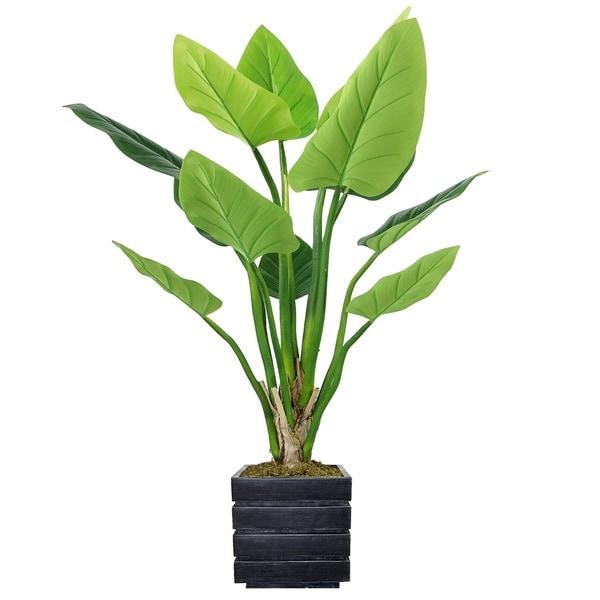 """51"""" Philodendron Erubescens Green Emerald in Fiberstone Planter - Black/Grey"""