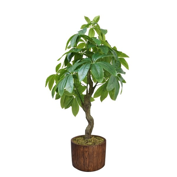 "33"" Pachira Aquat Real touch, indoor/outdoor in Fiberstone Planter - Brown"