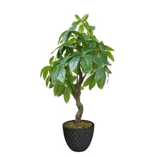 "33.6"" Pachira Aquat Real touch, indoor/outdoor in Fiberstone Planter - Black"