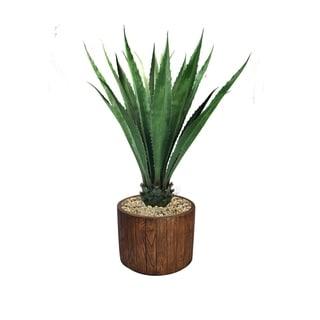 """56"""" Agave, Indoor/outdoor in Fiberstone Planter - Brown"""