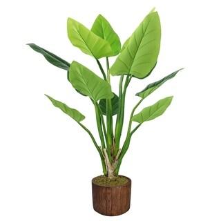 """53"""" Philodendron Erubescens Green Emerald in Fiberstone Planter - Brown"""