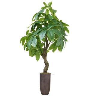 "42.25"" Pachira Aquat Real touch, indoor/outdoor in Fiberstone Planter - Brown"