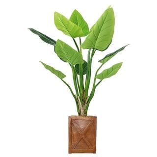 """41"""" Philodendron Erubescens Green Emerald in Fiberstone Planter - bronze"""