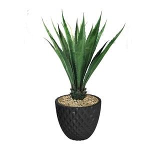 """56.6"""" Agave, Indoor/outdoor in Fiberstone Planter - Black"""
