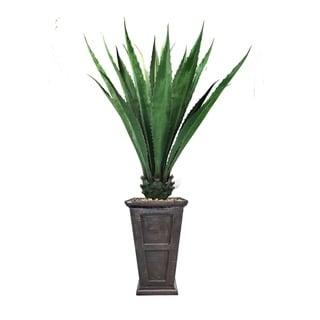 """70"""" Agave, Indoor/outdoor in Fiberstone Planter - black/bronze"""
