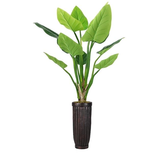 """69"""" Philodendron Erubescens Green Emerald in Fiberstone Planter - Black/brown"""