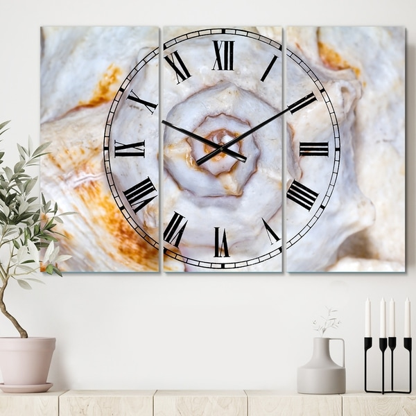 Designart 'Great Skeleton of Sea Shell' Cottage 3 Panels Large Wall CLock - 36 in. wide x 28 in. high - 3 panels. Opens flyout.