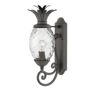 Hinkley Plantation 1-Light Outdoor Wall Mount Lantern in Museum Black
