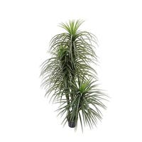 Green Fake Plants for Home and Office Décor