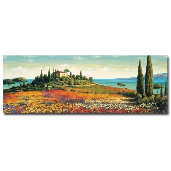 Afternoon Light by Richard Leblanc Gallery Wrapped Canvas Giclee Art (16 in x 48 in, Ready to Hang)