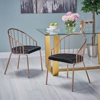 Doane Modern Velvet Dining Chair with Stainless Steel Frame (Set or 2) by Christopher Knight Home