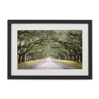 ArtWall Oak Trees With Spanish Moss In Savannah Georgia Framed Print - Green