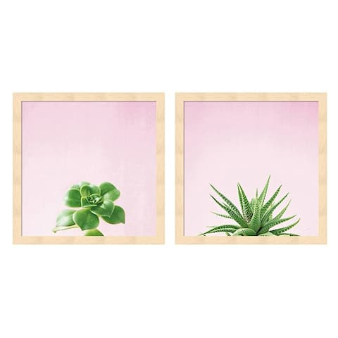 Porch & Den Felicity Bradley 'Succulent Simplicity on Pink C' Framed Art (Set of 2)